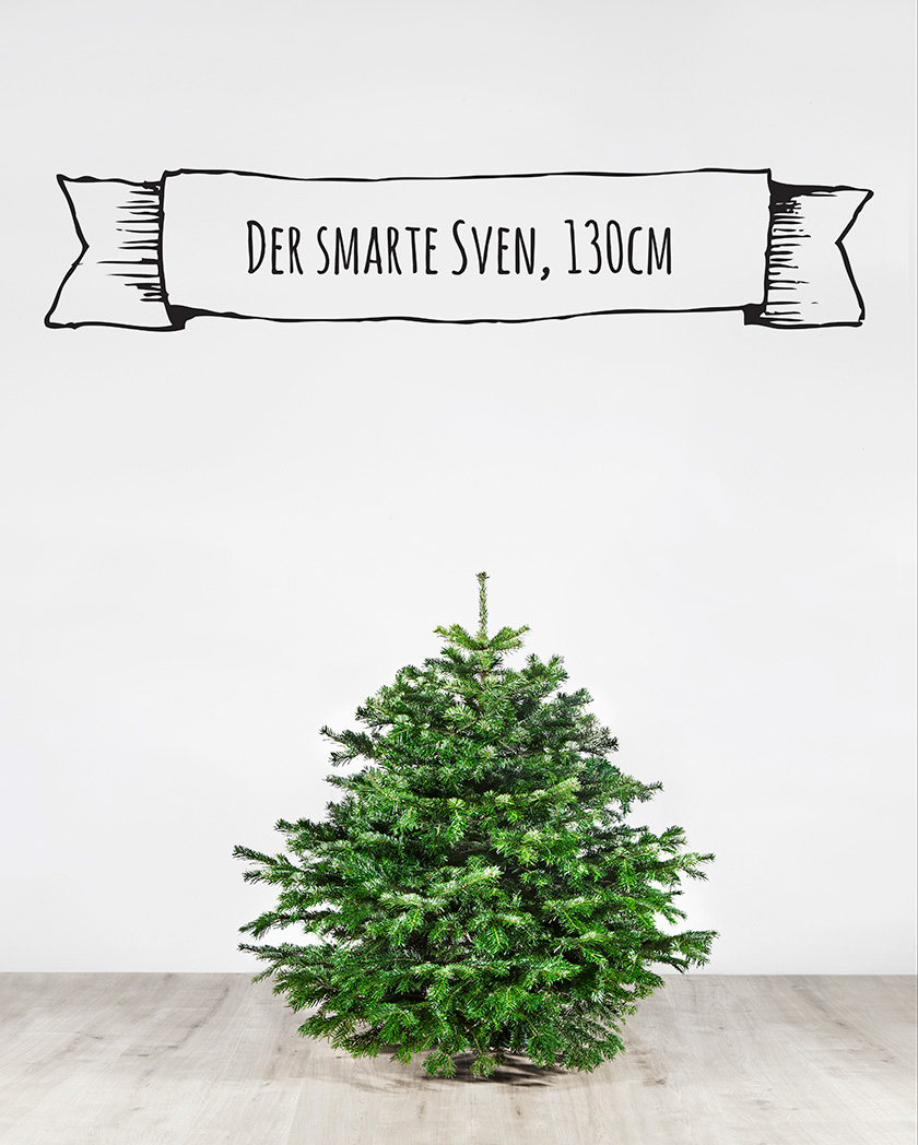 Weihnachtsbaum Berlin Lieferung.Ubertree Der Weihnachtsbaum Kommt Per Taxi Blonde Magazine