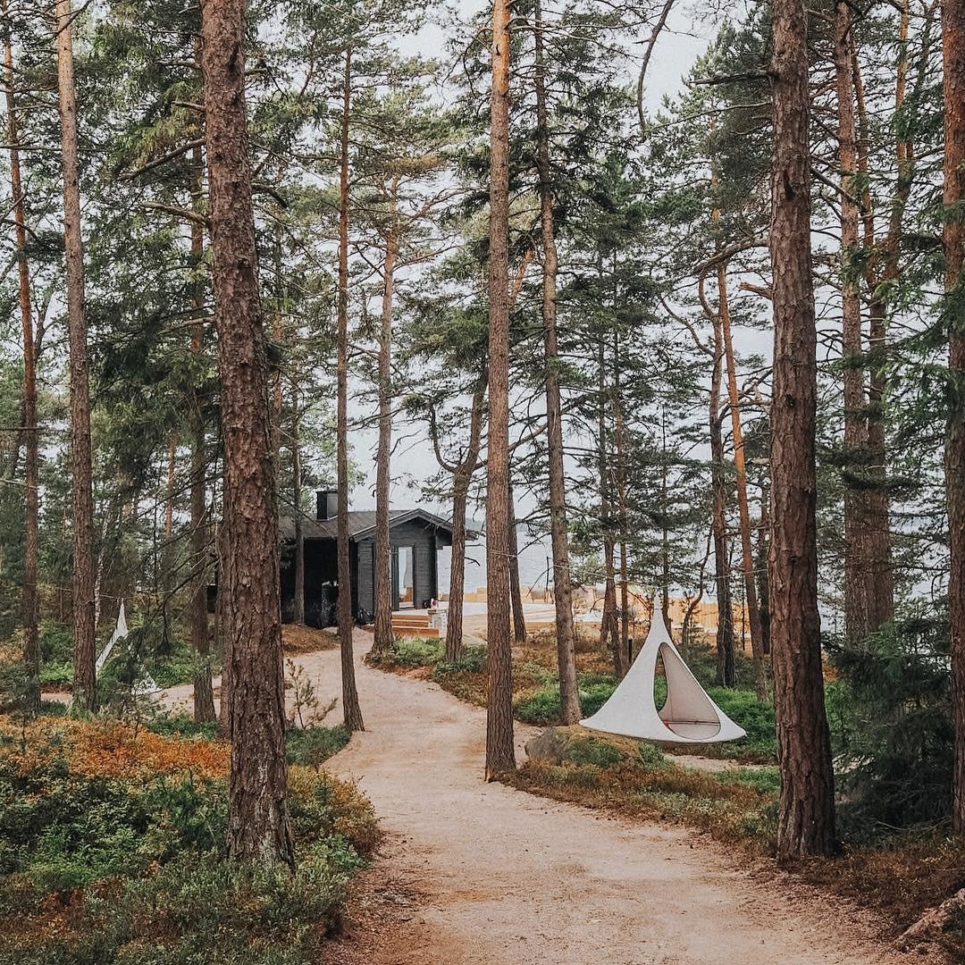 SuphersheIsland Wald Urlaub Zelt Baumhaus