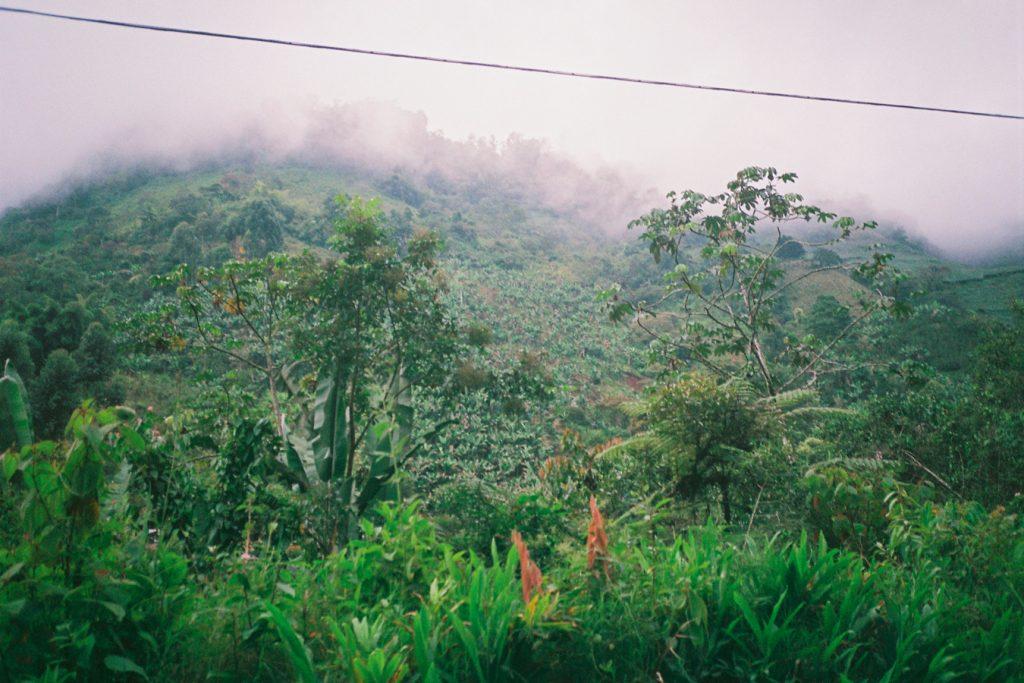 Kolumbien-Dschungel-Regenzeit-Berge-Travelguide